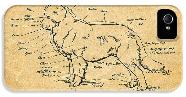 Doggy Diagram IPhone 5 Case by Tom Mc Nemar
