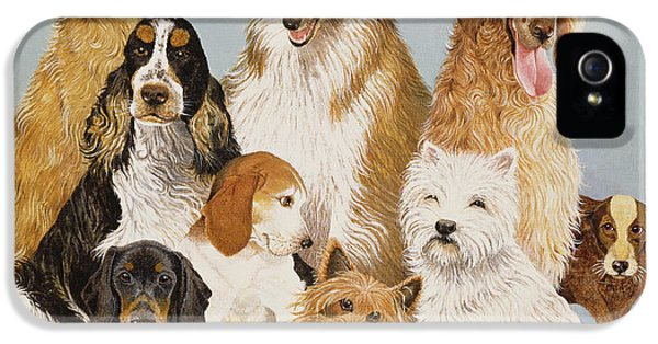 Dogs Dinner  IPhone 5 Case