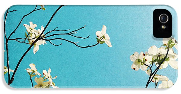 Dogwood Blooms IPhone 5 Case by Kim Fearheiley