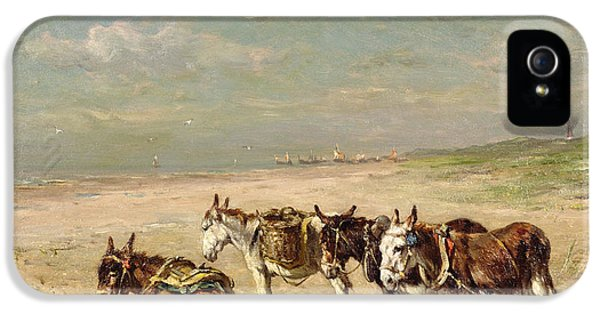 Donkeys On The Beach IPhone 5 Case by Johannes Hubertus Leonardus de Haas