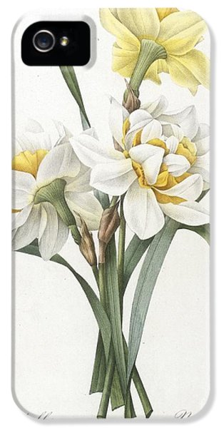 Double Daffodil IPhone 5 Case