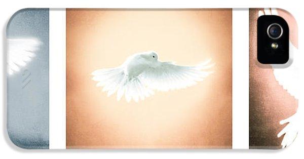 Dove In Flight Triptych IPhone 5 Case