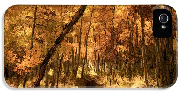 Down The Golden Path IPhone 5 Case