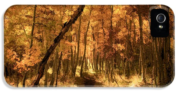 Down The Golden Path IPhone 5 Case by Donna Kennedy
