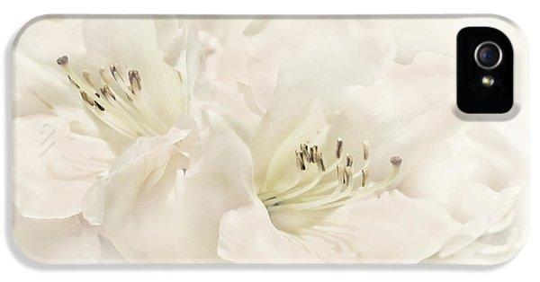 Dreamy Ivory White Azalea Flowers IPhone 5 Case by Jennie Marie Schell