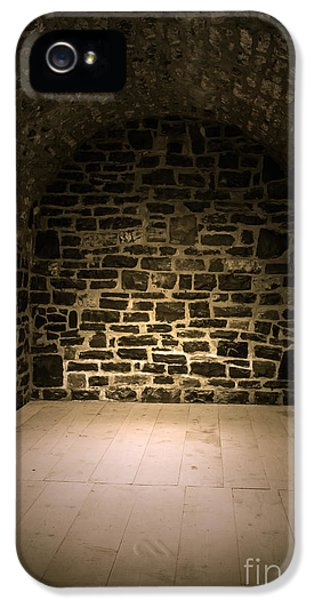 Dungeon iPhone 5 Case - Dungeon by Edward Fielding