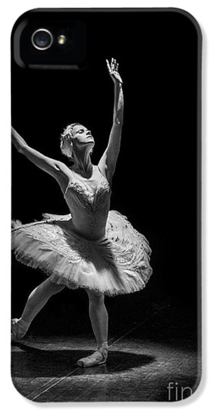 Dying Swan 6. IPhone 5 Case