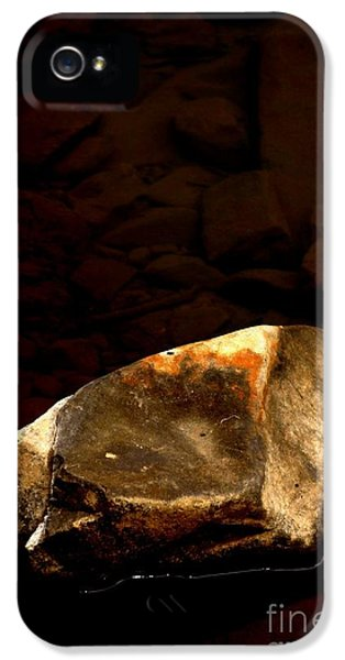 Earth Tones IPhone 5 Case by Marcia Lee Jones