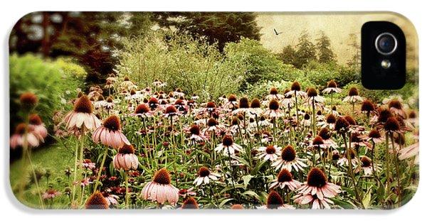 Echinacea Garden IPhone 5 Case