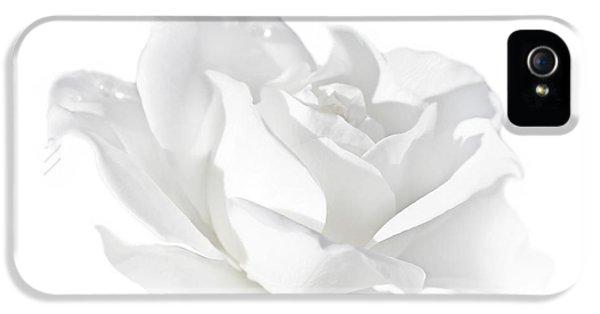 Elegance White Rose Flower IPhone 5 Case by Jennie Marie Schell