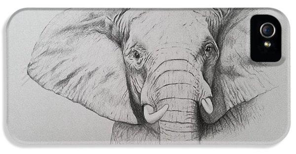 Elephant IPhone 5 Case by Ele Grafton
