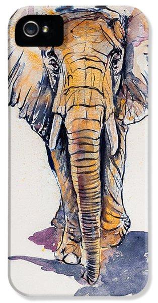Elephant In Gold IPhone 5 Case by Kovacs Anna Brigitta