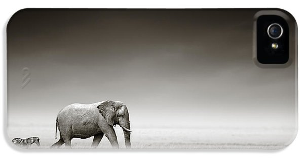 Elephant With Zebra IPhone 5 Case by Johan Swanepoel