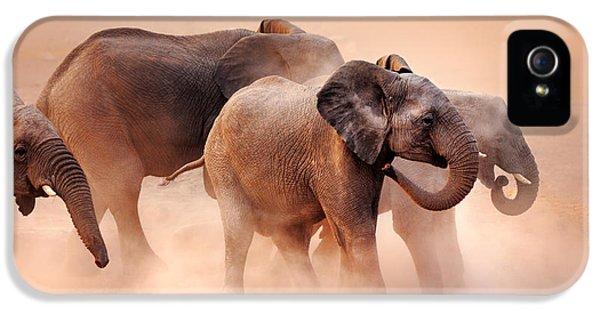 Elephants In Dust IPhone 5 Case by Johan Swanepoel