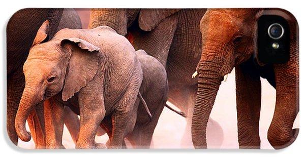Elephants Stampede IPhone 5 Case by Johan Swanepoel