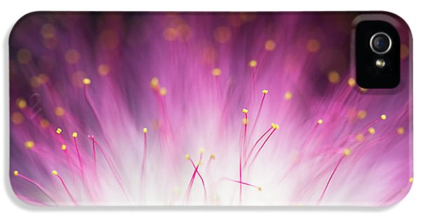 Stamens iPhone 5 Case - Elfin by Art Lionse