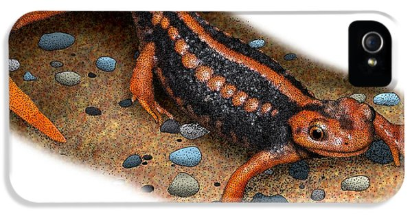 Emperor Newt IPhone 5 Case by Roger Hall