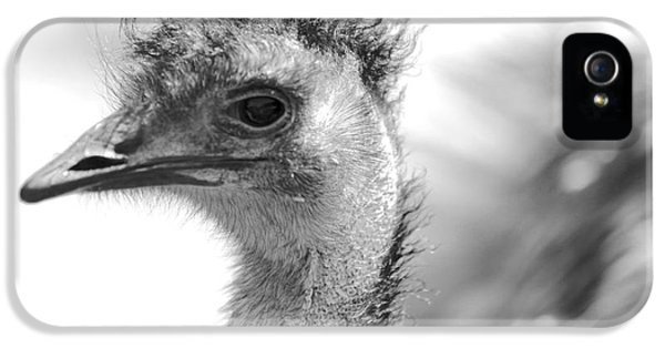 Emu - Black And White IPhone 5 / 5s Case by Carol Groenen