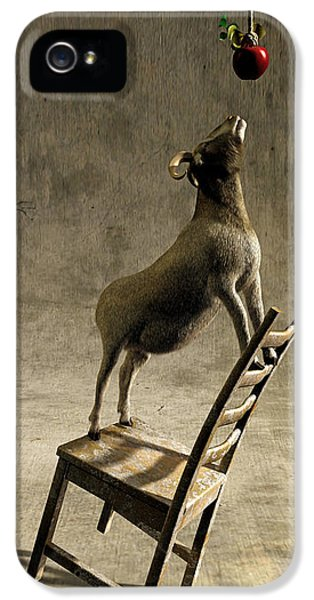 Equilibrium IPhone 5 Case by Cynthia Decker