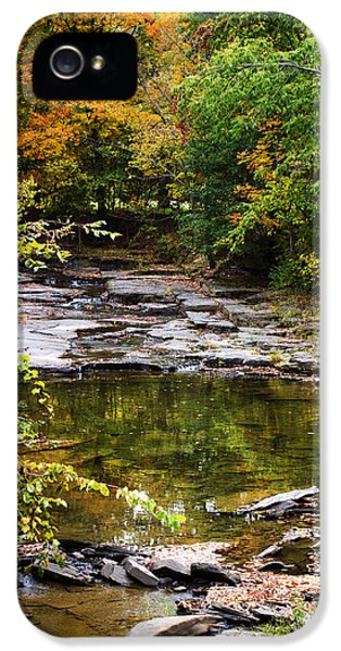 Fall Creek IPhone 5 Case by Christina Rollo