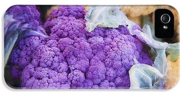 Farmers Market Purple Cauliflower Square IPhone 5 Case by Carol Leigh