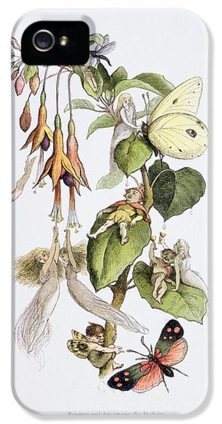 Feasting And Fun Among The Fuschias IPhone 5 Case by Richard Doyle