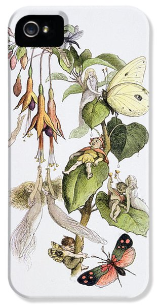 Feasting And Fun Among The Fuschias IPhone 5 / 5s Case by Richard Doyle