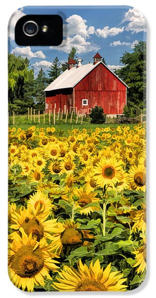 Field Of Sunflowers IPhone 5 Case by Christopher Arndt