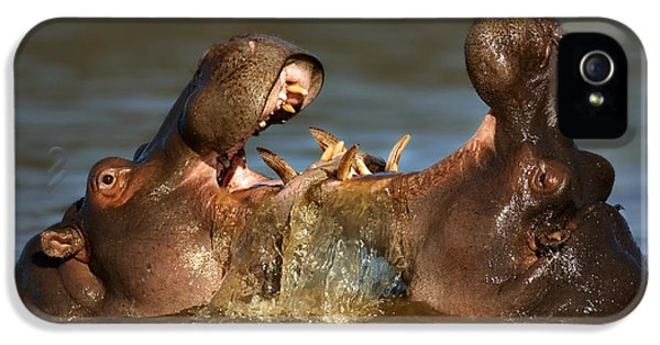 Fighting Hippo's IPhone 5 Case by Johan Swanepoel
