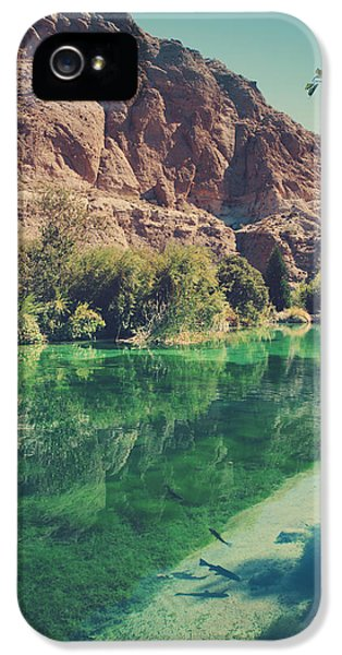 Desert iPhone 5 Case - Fish Gotta Swim by Laurie Search