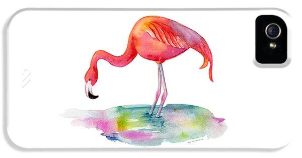 Flamingo Dip IPhone 5 Case