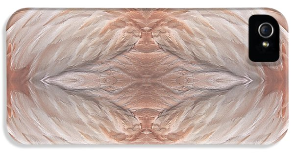 Flamingo Feather Abstract IPhone 5 Case by Susan Candelario