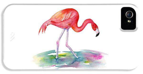 Flamingo Step IPhone 5 Case