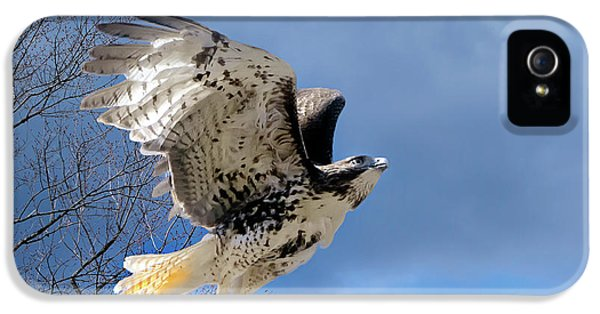 Flight Of The Red Tail IPhone 5 Case