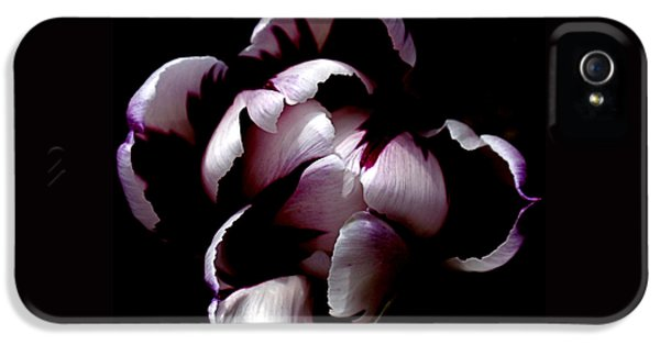 Floral Symmetry IPhone 5 / 5s Case by Rona Black