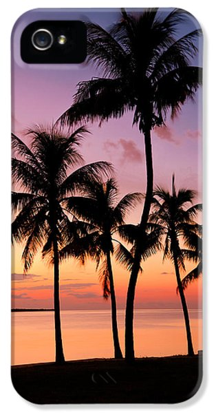 Florida Breeze IPhone 5 Case by Chad Dutson