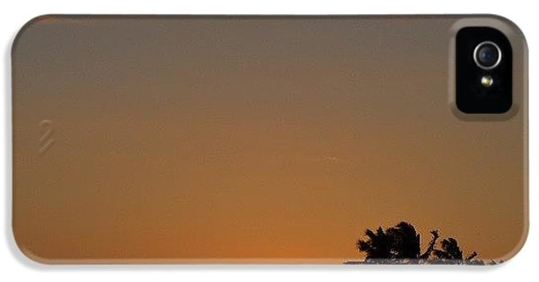 Bright iPhone 5 Case - Florida Sunsets by Alexa V