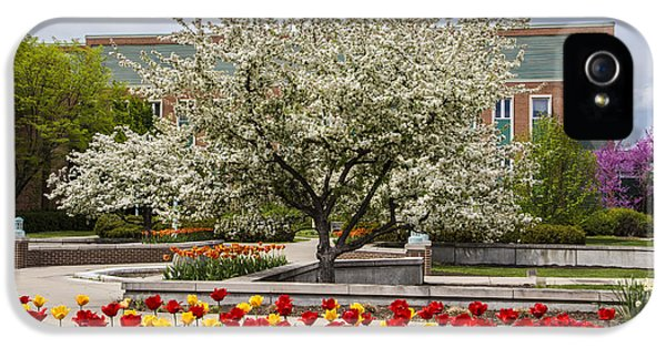 Flowers And Tree At Michigan State University  IPhone 5 Case