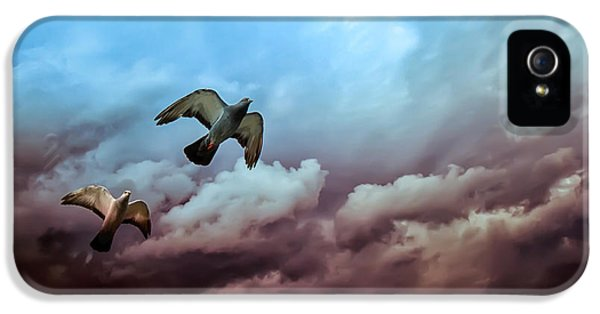 Flying Before The Storm IPhone 5 Case by Bob Orsillo