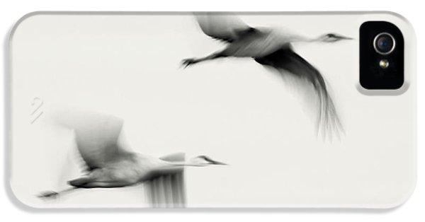 Crane iPhone 5 Case - Flying Dreams by John Fan