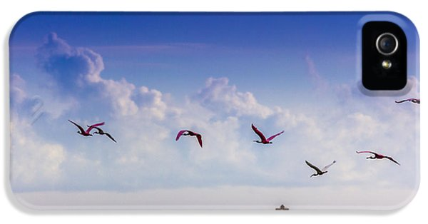 Ibis iPhone 5 Case - Flying Free by Marvin Spates