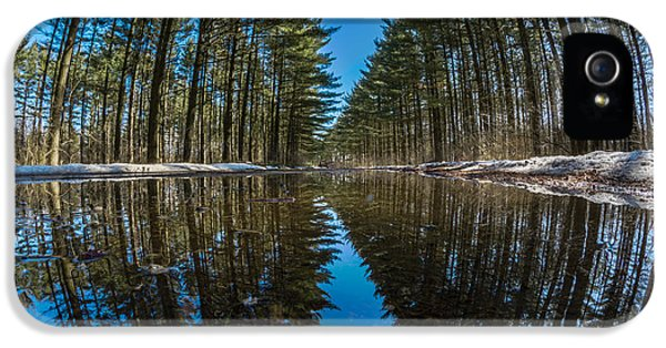 Forest Reflections IPhone 5 Case by Randy Scherkenbach