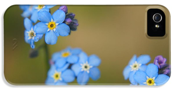 Forget Me Not 01 - S01r IPhone 5 Case