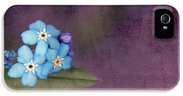 Forget Me Not 02 - S0304bt02b IPhone 5 Case