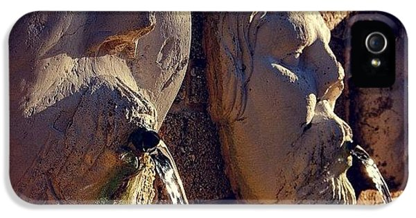 Iger iPhone 5 Case - Fountain - Fl by Joel Lopez