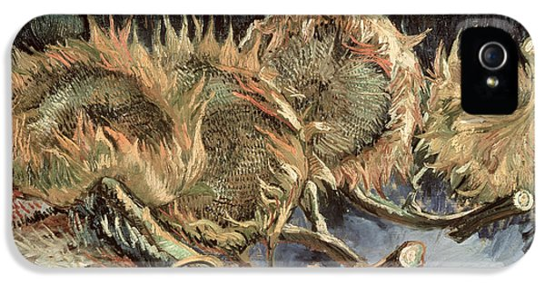 Four Withered Sunflowers IPhone 5 Case