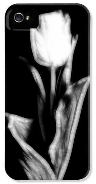 Fractal Tulip IPhone 5 Case by Sebastian Musial