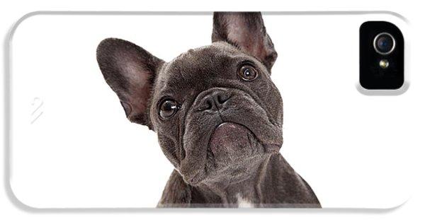 French Bulldog Closeup IPhone 5 Case by Susan Schmitz