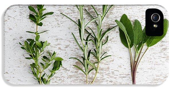 Fresh Herbs IPhone 5 Case by Nailia Schwarz