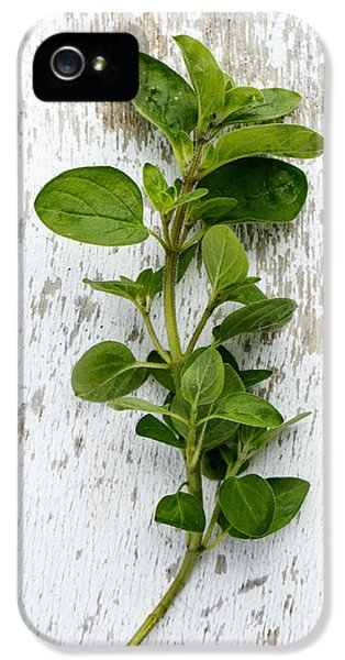 Fresh Oregano IPhone 5 Case